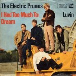 'I Had Too Much To Dream (Last Night)' (The Electric Prunes)