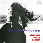 'Know you now' (The Someloves)