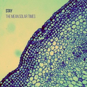 STAY - 'The Mean Solar Times' (CD)