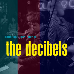 THE DECIBELS - 'Scene not herd' (CD)